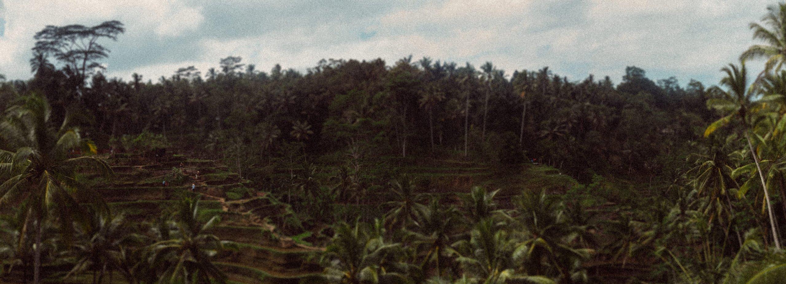 Johannes-Maur-Panorama-Fotografie-Indonesia_6